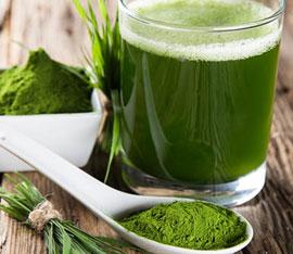 proprieta e i benefici della alga clorella